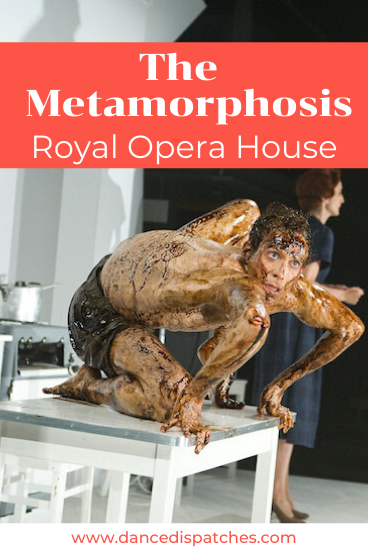 The Metamorphosis Royal Opera House Pinterest Pin