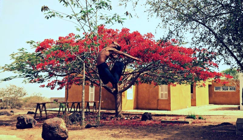 A man arches and jumps back in front of a pink bougainvillea tree